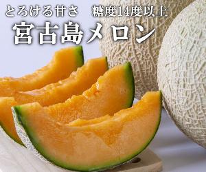 miyakojimameron.jpg